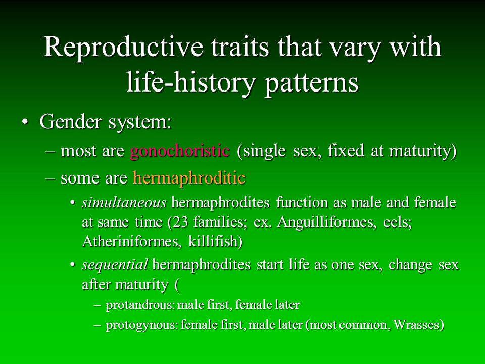 Reproductive traits that vary with life-history patterns Gender system:Gender system: –most are gonochoristic (single sex, fixed at maturity) –some ar
