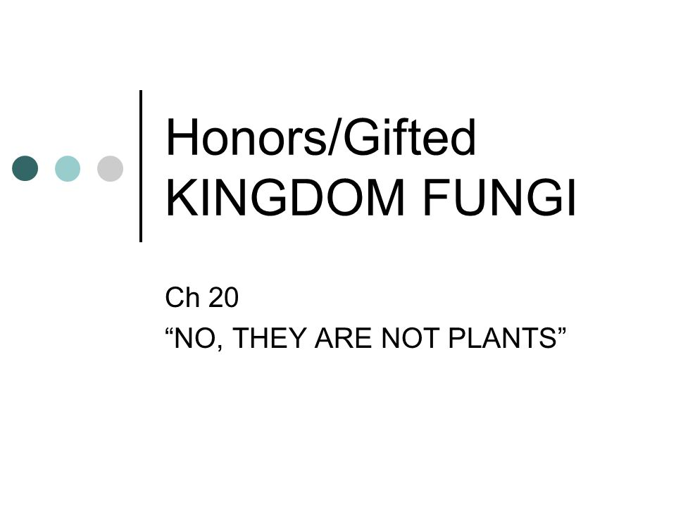 Honors/Gifted KINGDOM FUNGI Ch 20 NO, THEY ARE NOT PLANTS