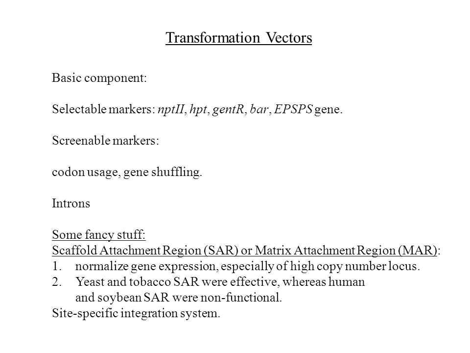 Transformation Vectors Basic component: Selectable markers: nptII, hpt, gentR, bar, EPSPS gene. Screenable markers: codon usage, gene shuffling. Intro