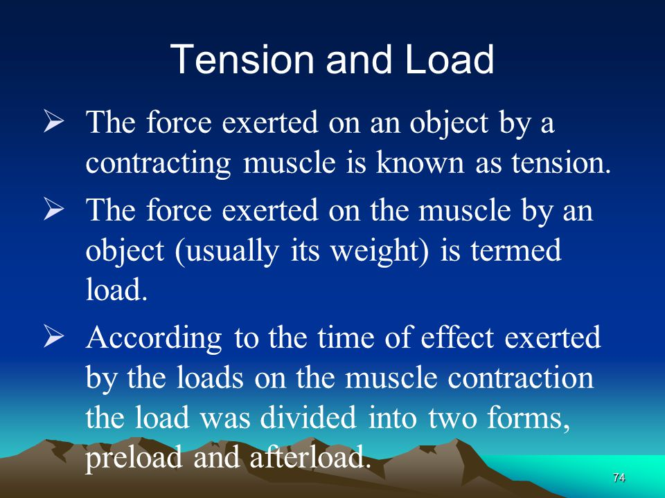 IV Factors that Affect the Efficiency of Muscle Contraction