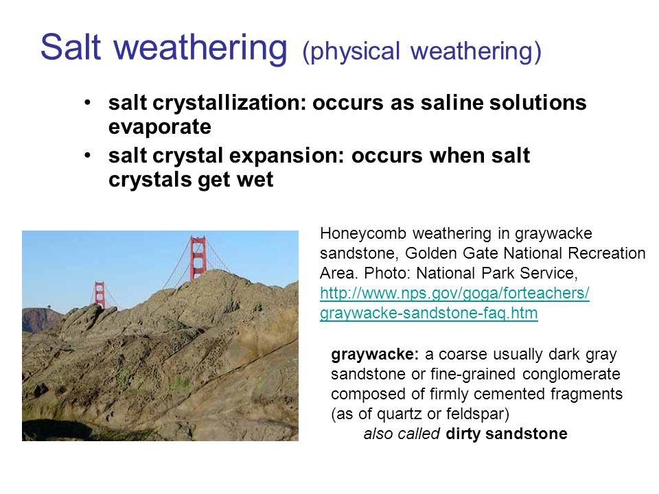 Salt weathering (physical weathering) salt crystallization: occurs as saline solutions evaporate salt crystal expansion: occurs when salt crystals get wet Honeycomb weathering in graywacke sandstone, Golden Gate National Recreation Area.