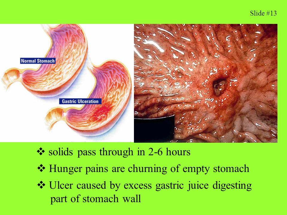 What stimulates gastric juice flow.
