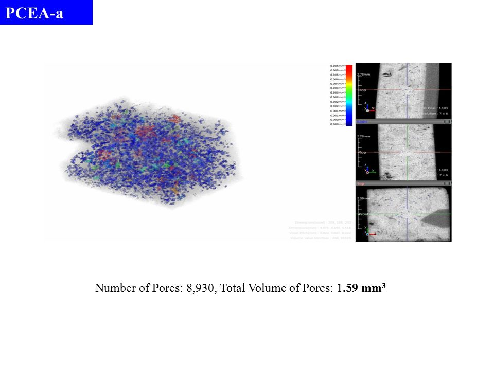 PCEA-a Number of Pores: 8,930, Total Volume of Pores: 1.59 mm 3