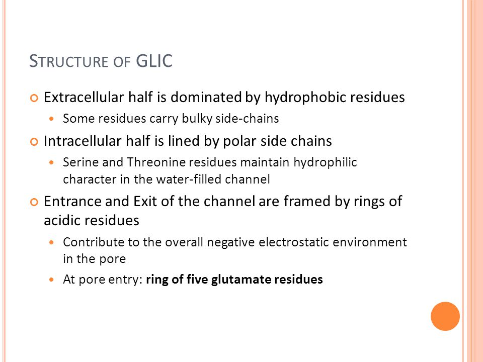 S TRUCTURE OF GLIC Extracellular half is dominated by hydrophobic residues Some residues carry bulky side-chains Intracellular half is lined by polar side chains Serine and Threonine residues maintain hydrophilic character in the water-filled channel Entrance and Exit of the channel are framed by rings of acidic residues Contribute to the overall negative electrostatic environment in the pore At pore entry: ring of five glutamate residues