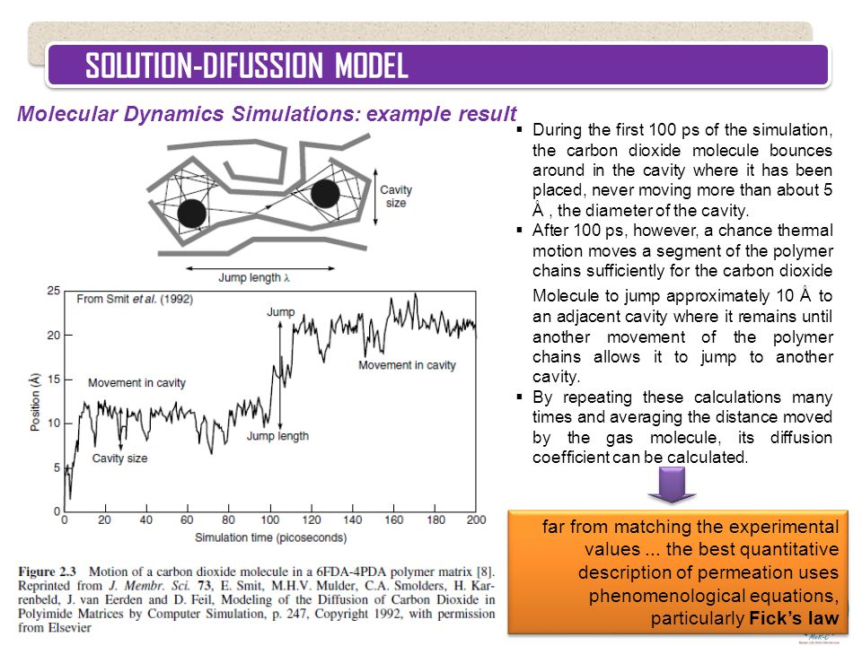 SOLUTION-DIFUSSION MODEL Molecular Dynamics Simulations: example result  During the first 100 ps of the simulation, the carbon dioxide molecule bounc