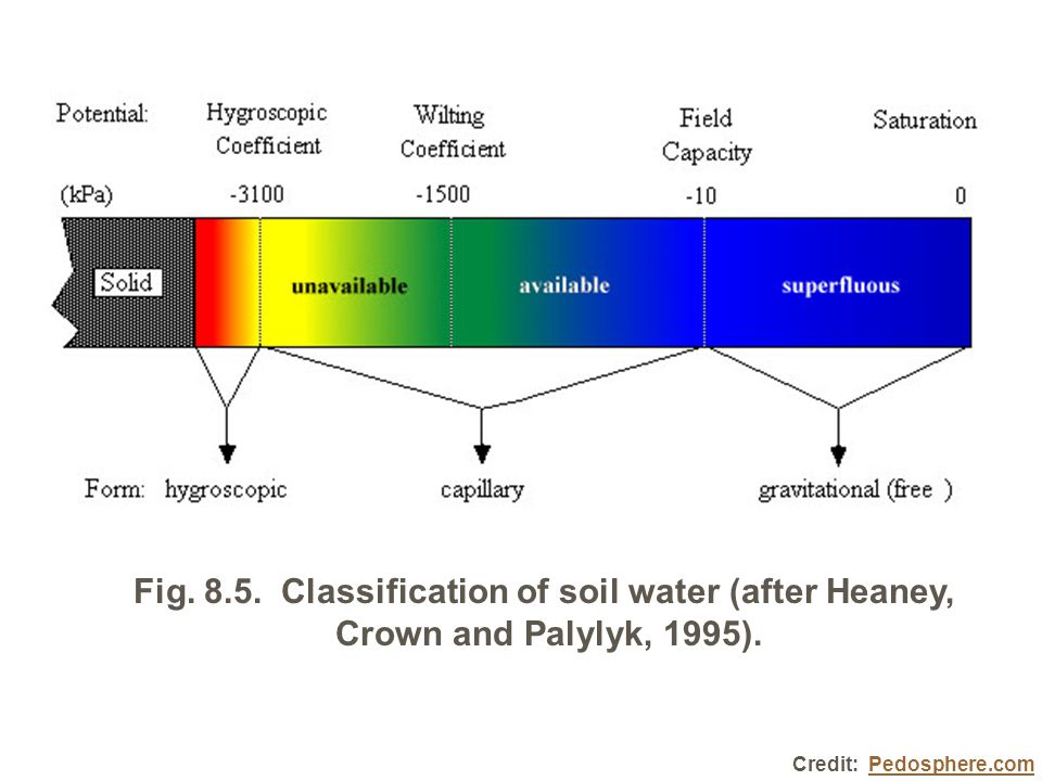 Fig. 8.5. Classification of soil water (after Heaney, Crown and Palylyk, 1995).