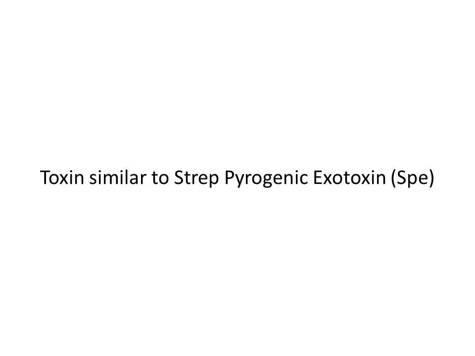Toxin similar to Strep Pyrogenic Exotoxin (Spe)