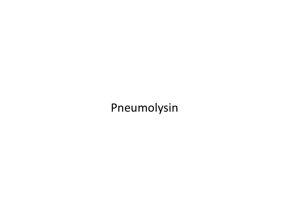 Pneumolysin