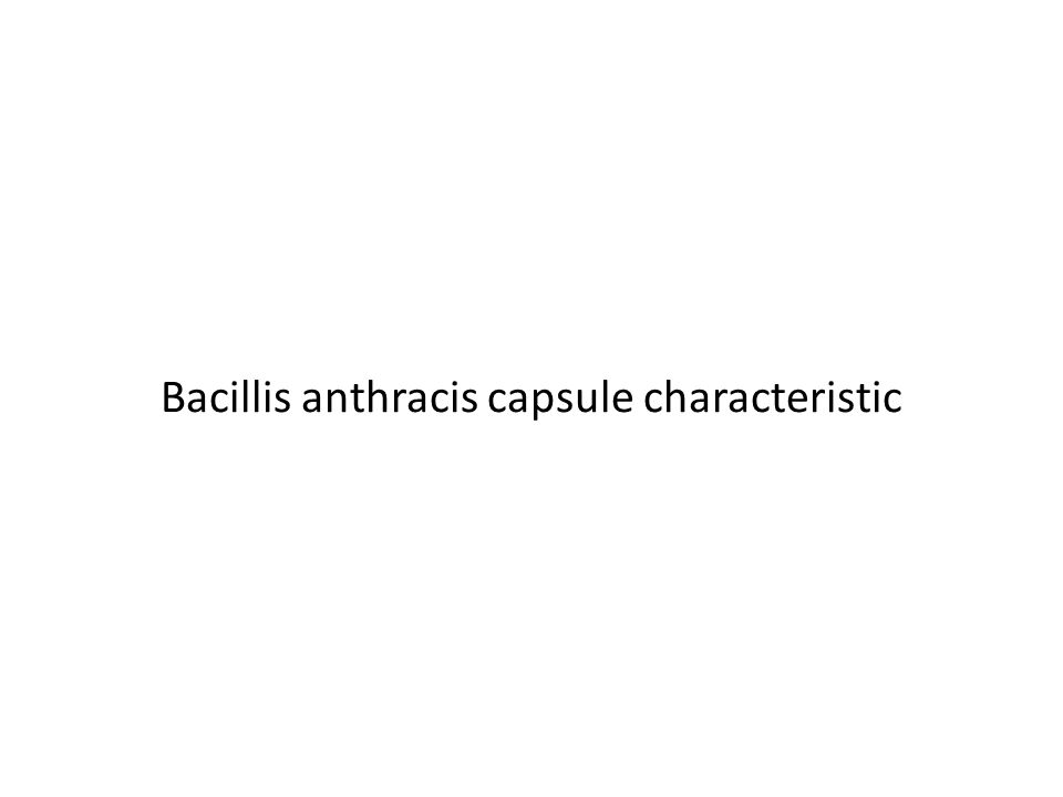 Bacillis anthracis capsule characteristic