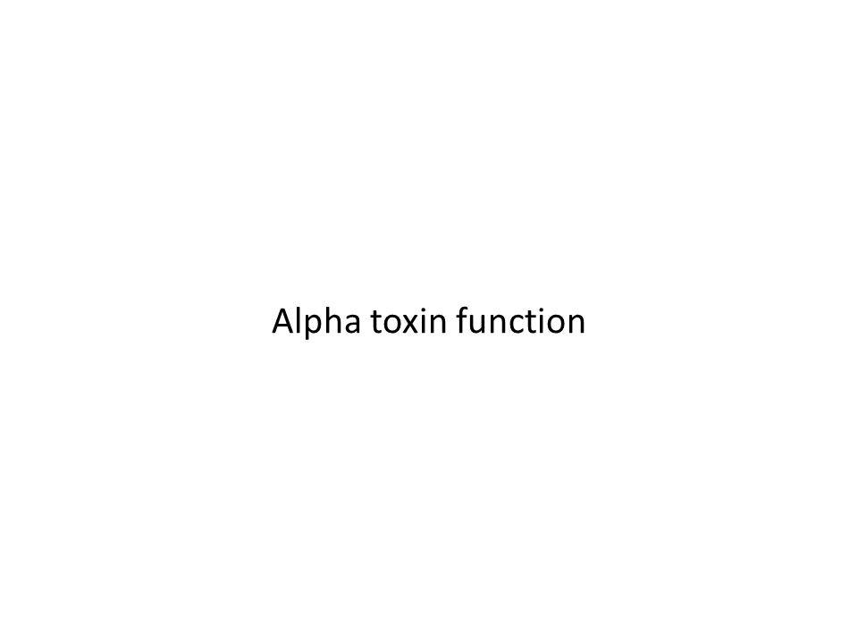 Alpha toxin function