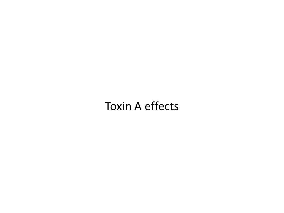 Toxin A effects