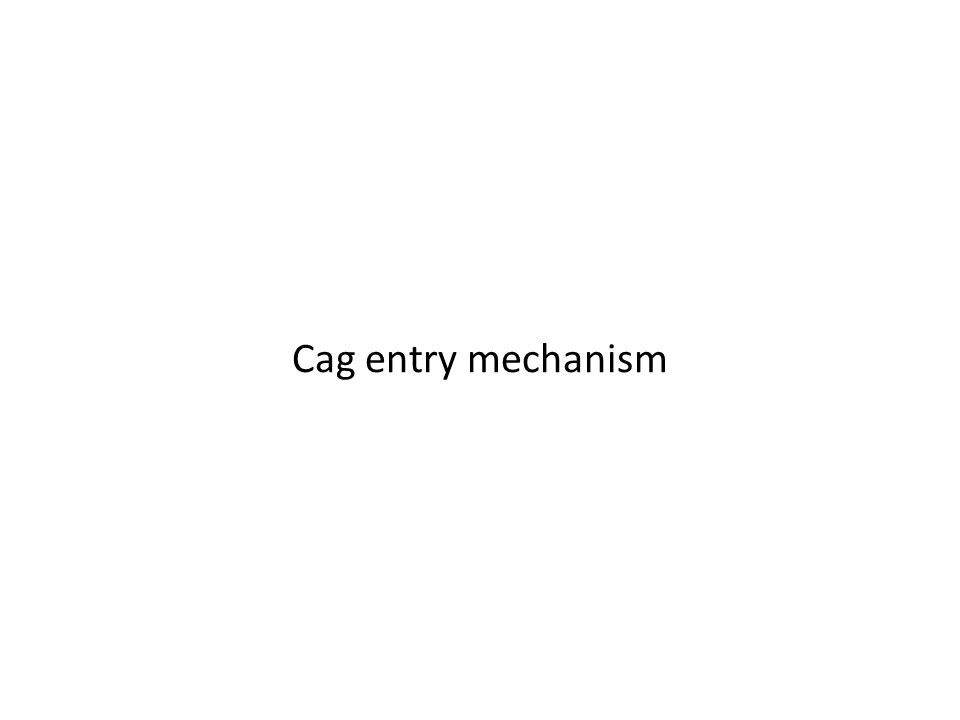 Cag entry mechanism
