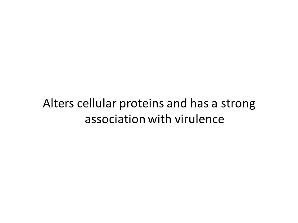 Alters cellular proteins and has a strong association with virulence