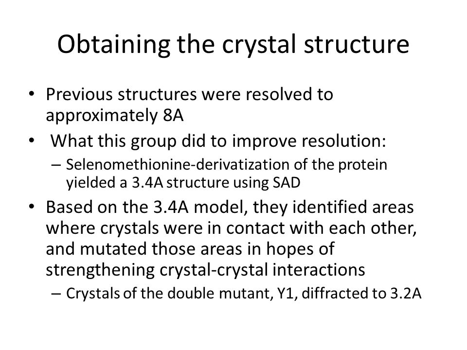 Obtaining the crystal structure Previous structures were resolved to approximately 8A What this group did to improve resolution: – Selenomethionine-derivatization of the protein yielded a 3.4A structure using SAD Based on the 3.4A model, they identified areas where crystals were in contact with each other, and mutated those areas in hopes of strengthening crystal-crystal interactions – Crystals of the double mutant, Y1, diffracted to 3.2A