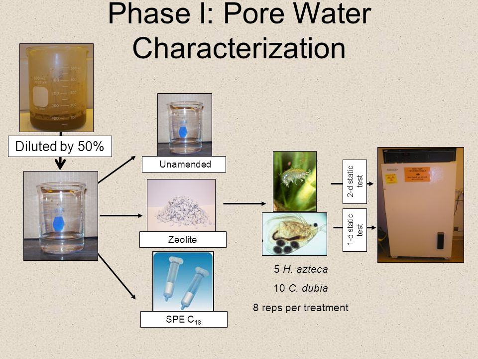 Phase I: Pore Water Characterization Zeolite Unamended 5 H. azteca 10 C. dubia 8 reps per treatment 2-d static test Diluted by 50% SPE C 18 1-d static