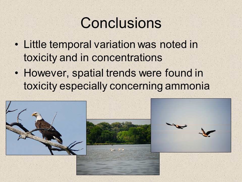 Conclusions Little temporal variation was noted in toxicity and in concentrations However, spatial trends were found in toxicity especially concerning
