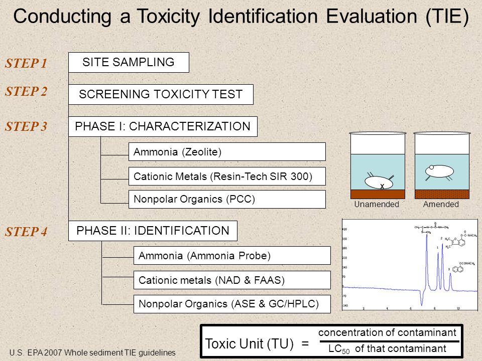 SITE SAMPLING SCREENING TOXICITY TEST PHASE I: CHARACTERIZATION Ammonia (Zeolite) Cationic Metals (Resin-Tech SIR 300) Nonpolar Organics (PCC) Conduct