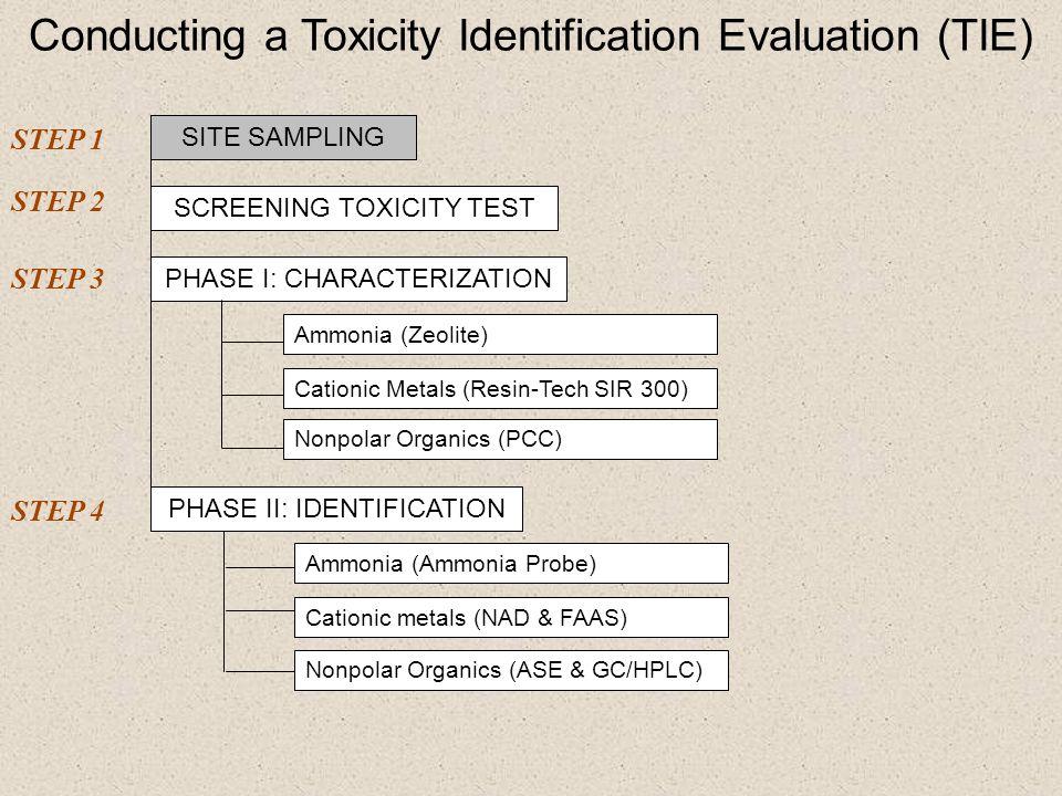 Phase I: Whole Sediment Characterization Zeolite Unamended 10 H.