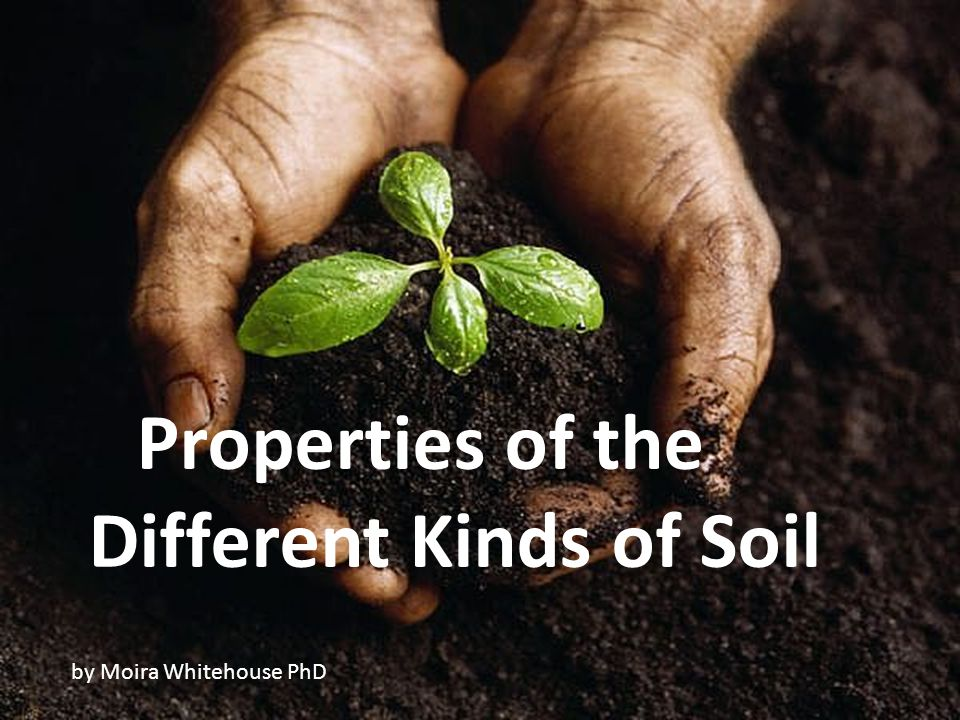 Properties of the Different Kinds of Soil by Moira Whitehouse PhD
