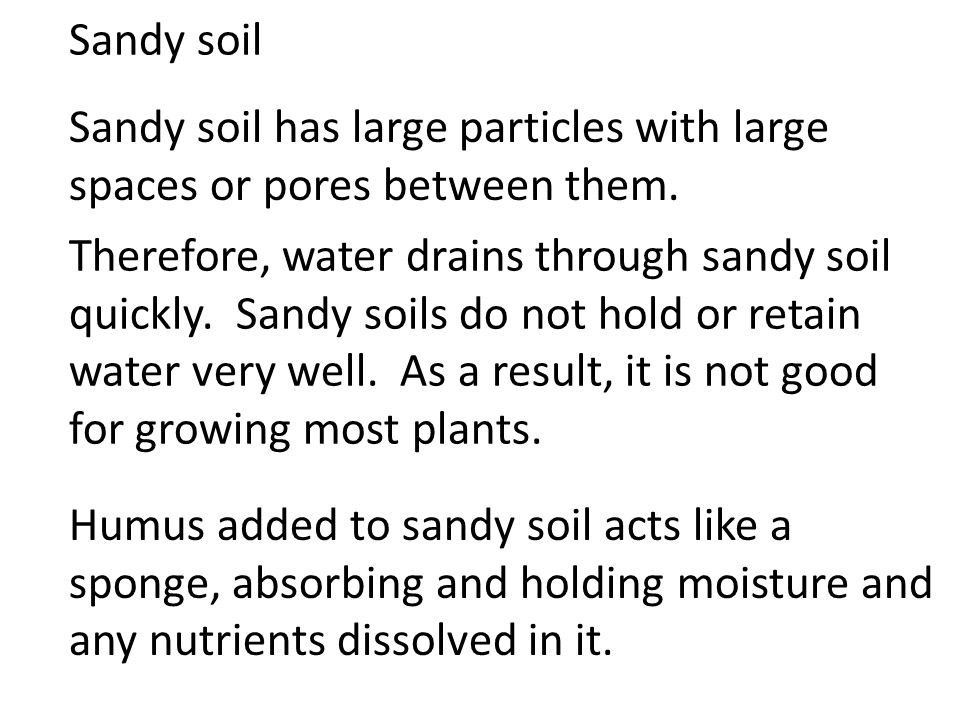 Sandy soil Sandy soil has large particles with large spaces or pores between them. Therefore, water drains through sandy soil quickly. Sandy soils do