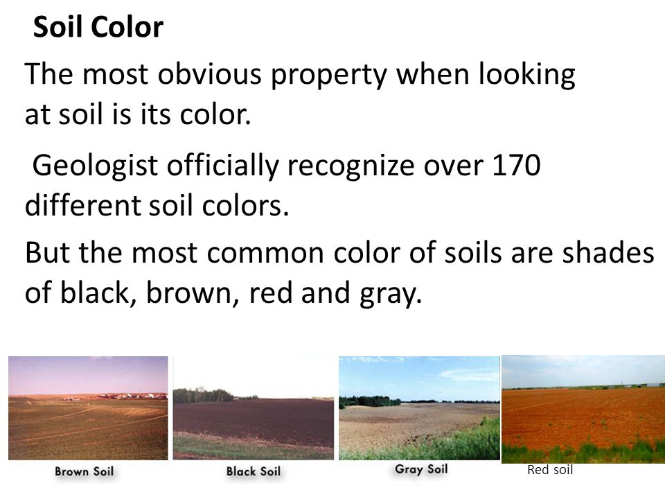 Soil Color The most obvious property when looking at soil is its color. Geologist officially recognize over 170 different soil colors. But the most co