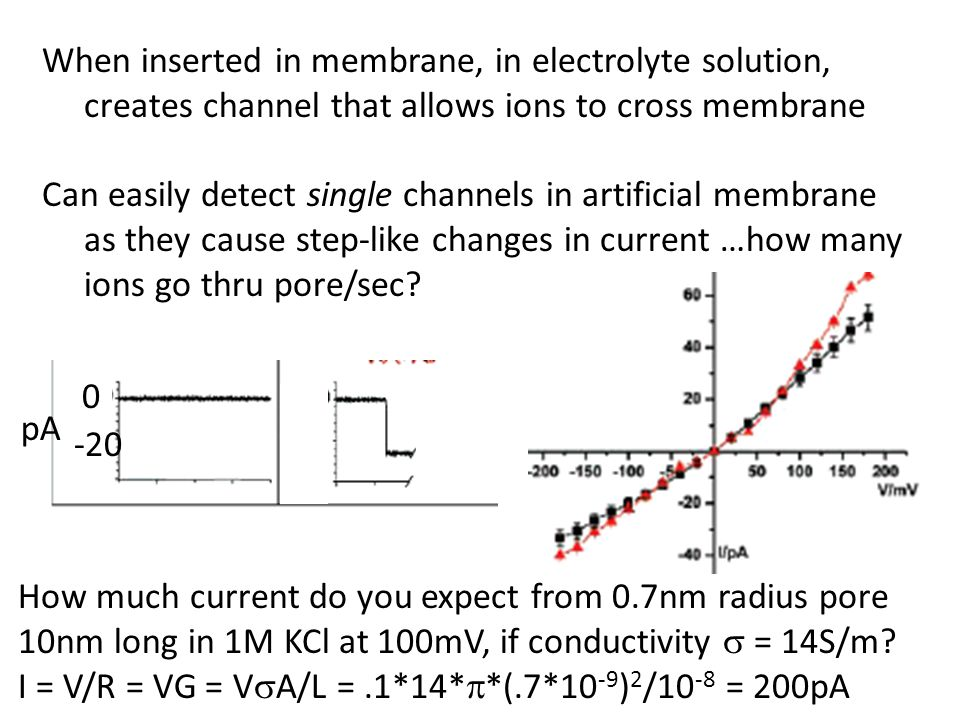 When inserted in membrane, in electrolyte solution, creates channel that allows ions to cross membrane Can easily detect single channels in artificial membrane as they cause step-like changes in current …how many ions go thru pore/sec.
