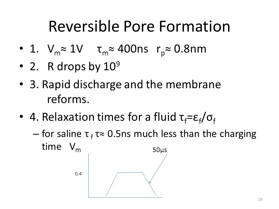 Reversible Pore Formation 1. V m ≈ 1V τ m ≈ 400ns r p ≈ 0.8nm 2. R drops by 10 9 3. Rapid discharge and the membrane reforms. 4. Relaxation times for