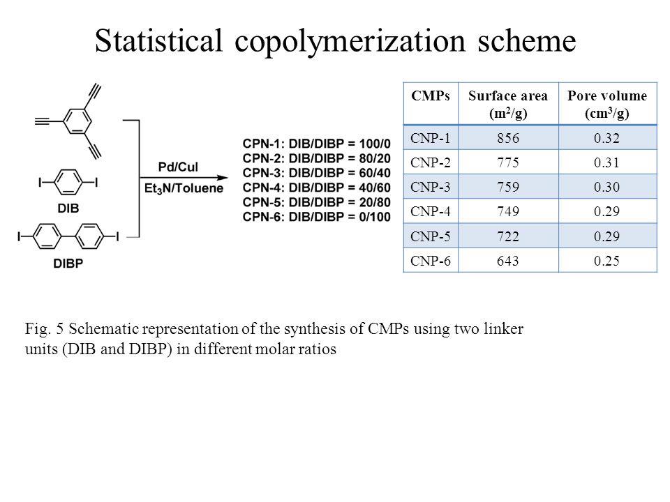Statistical copolymerization scheme Fig.