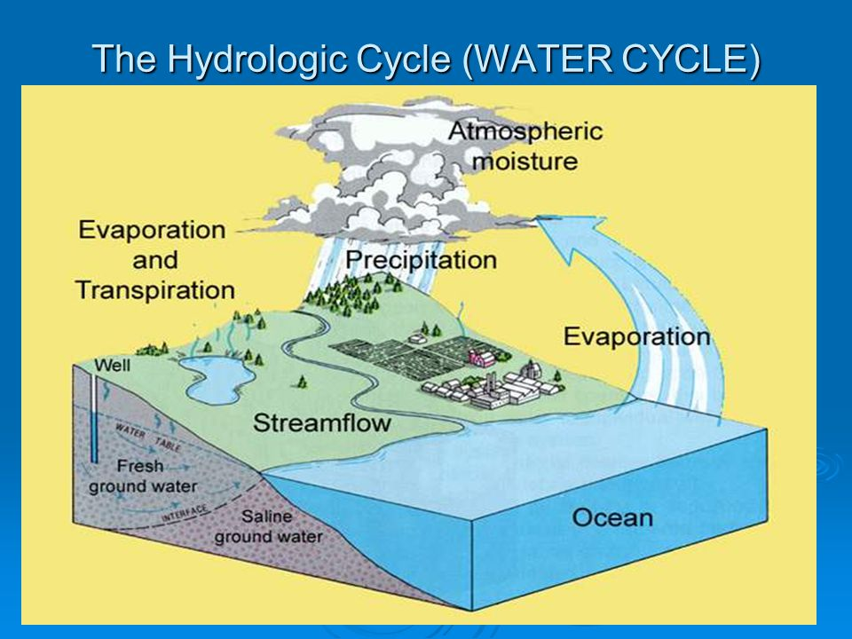 The Hydrologic Cycle (WATER CYCLE)