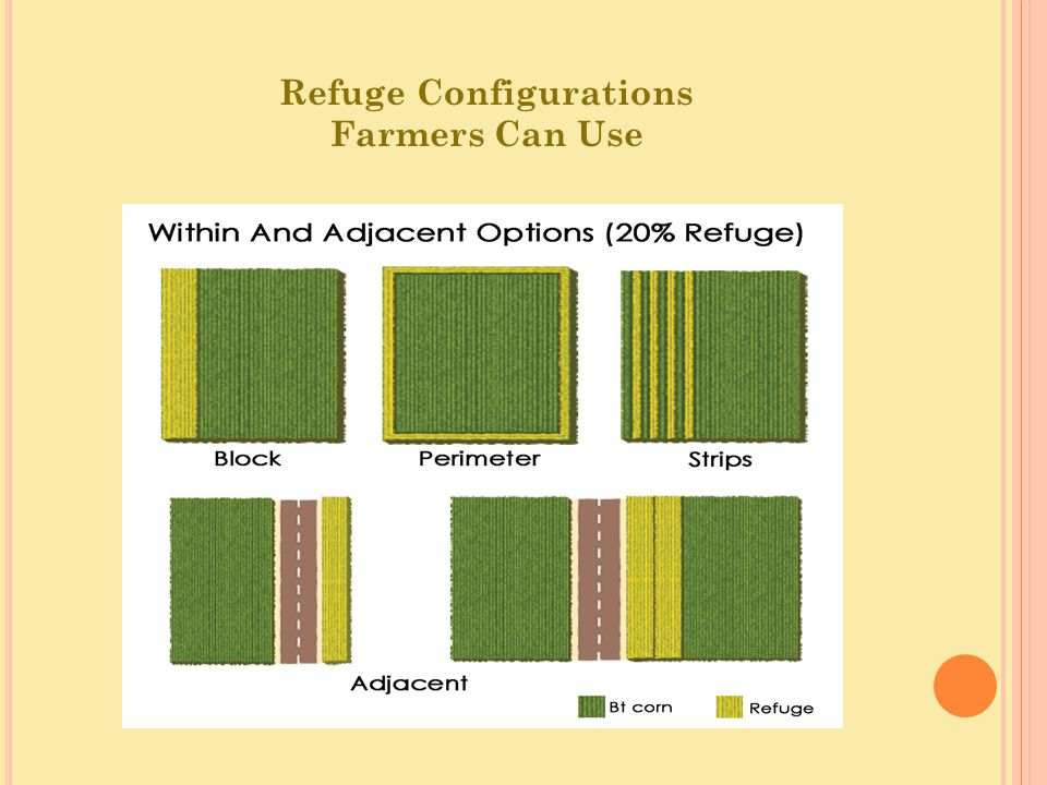 Refuge Configurations Farmers Can Use