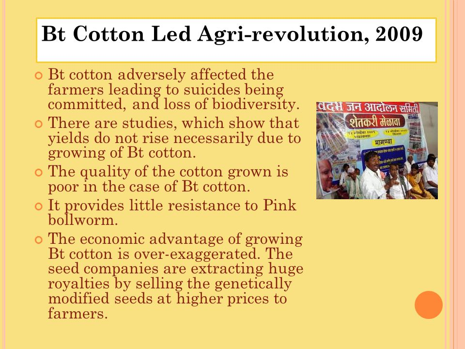 Bt cotton adversely affected the farmers leading to suicides being committed, and loss of biodiversity. There are studies, which show that yields do n