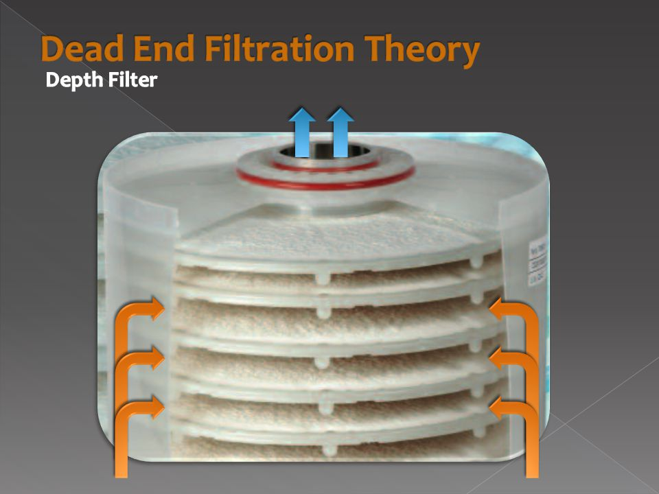  Removes residual IBs, cell debris & biomass  Specifications › 1.25 hours filtration time, 23.3 kg filter cake/batch
