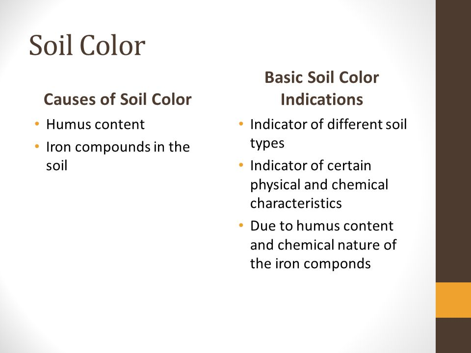 Soil Color Causes of Soil Color Humus content Iron compounds in the soil Basic Soil Color Indications Indicator of different soil types Indicator of certain physical and chemical characteristics Due to humus content and chemical nature of the iron componds