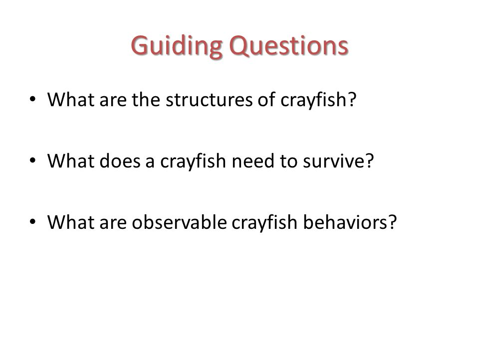 Guiding Questions What are the structures of crayfish.