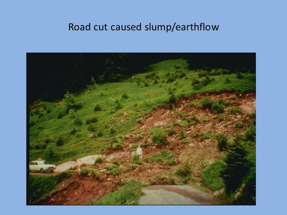 Road cut caused slump/earthflow
