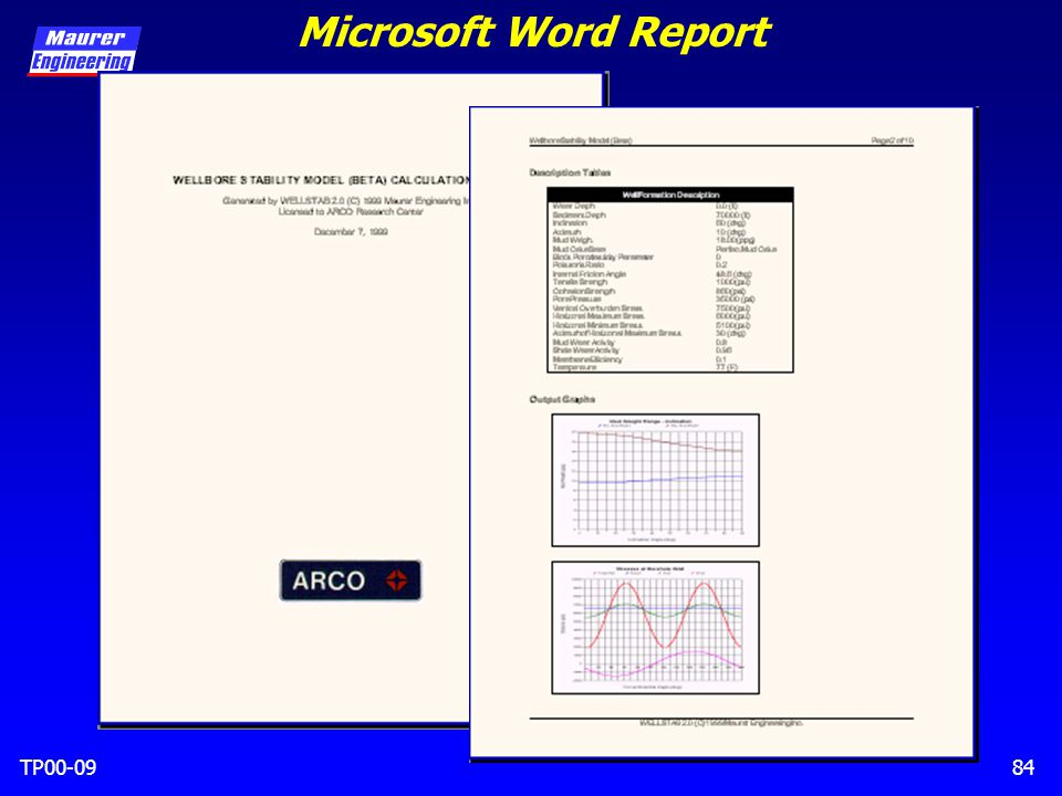 TP00-0984 Microsoft Word Report