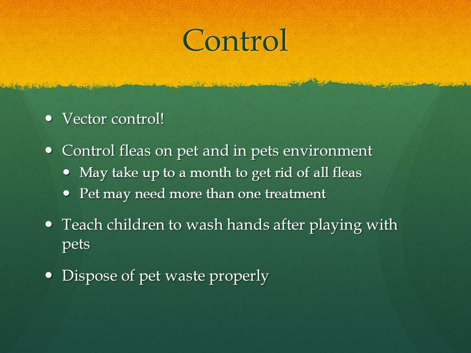 Control Vector control. Vector control.