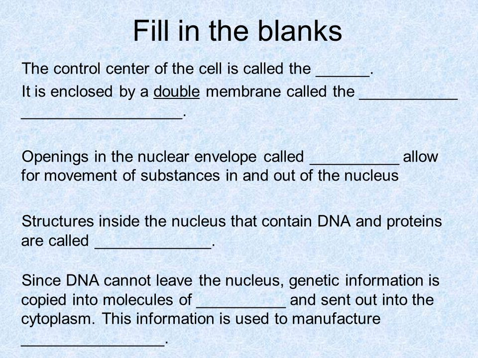 Fill in the blanks The control center of the cell is called the ______. It is enclosed by a double membrane called the ___________ __________________.