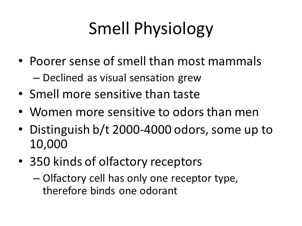 Smell Physiology Poorer sense of smell than most mammals – Declined as visual sensation grew Smell more sensitive than taste Women more sensitive to o