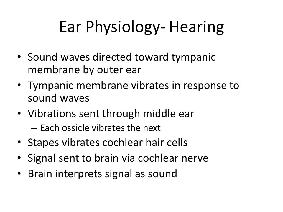 Ear Physiology- Hearing Sound waves directed toward tympanic membrane by outer ear Tympanic membrane vibrates in response to sound waves Vibrations se