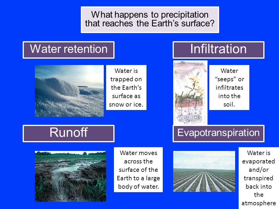 What happens to precipitation that reaches the Earth's surface? Water retention Infiltration Evapotranspiration Runoff Water is trapped on the Earth's