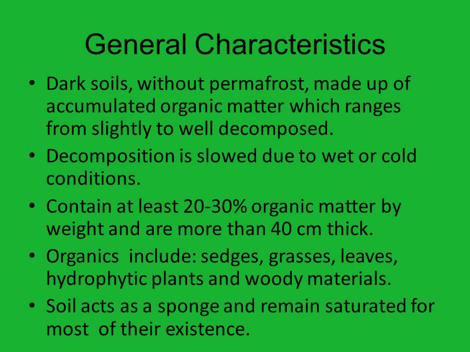 General Characteristics Dark soils, without permafrost, made up of accumulated organic matter which ranges from slightly to well decomposed.