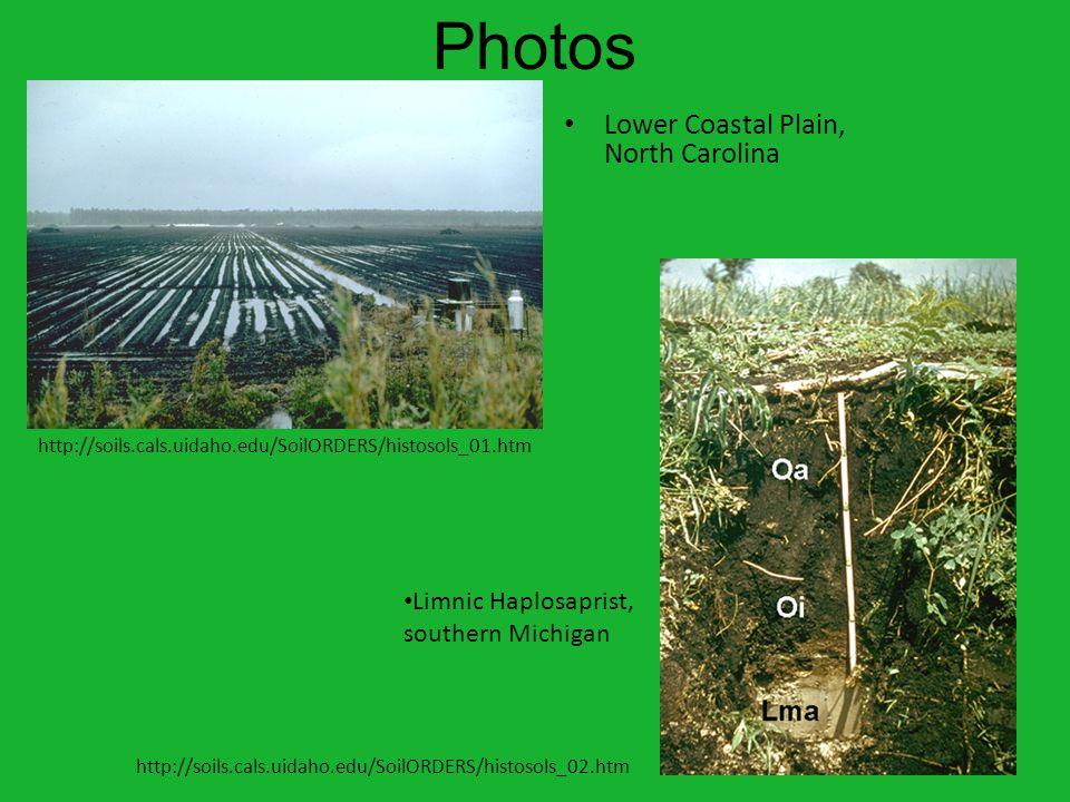 Photos Lower Coastal Plain, North Carolina Limnic Haplosaprist, southern Michigan http://soils.cals.uidaho.edu/SoilORDERS/histosols_02.htm http://soils.cals.uidaho.edu/SoilORDERS/histosols_01.htm