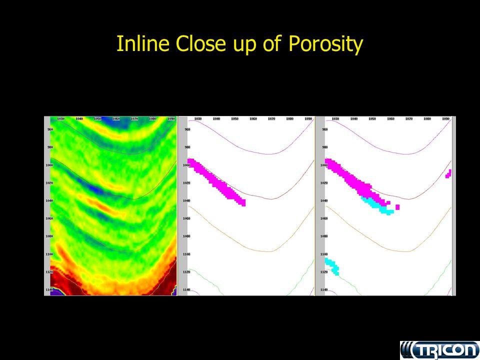 Inline Close up of Porosity
