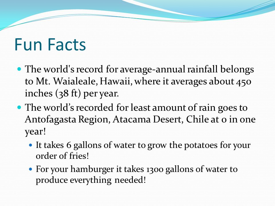Fun Facts The world's record for average-annual rainfall belongs to Mt. Waialeale, Hawaii, where it averages about 450 inches (38 ft) per year. The wo