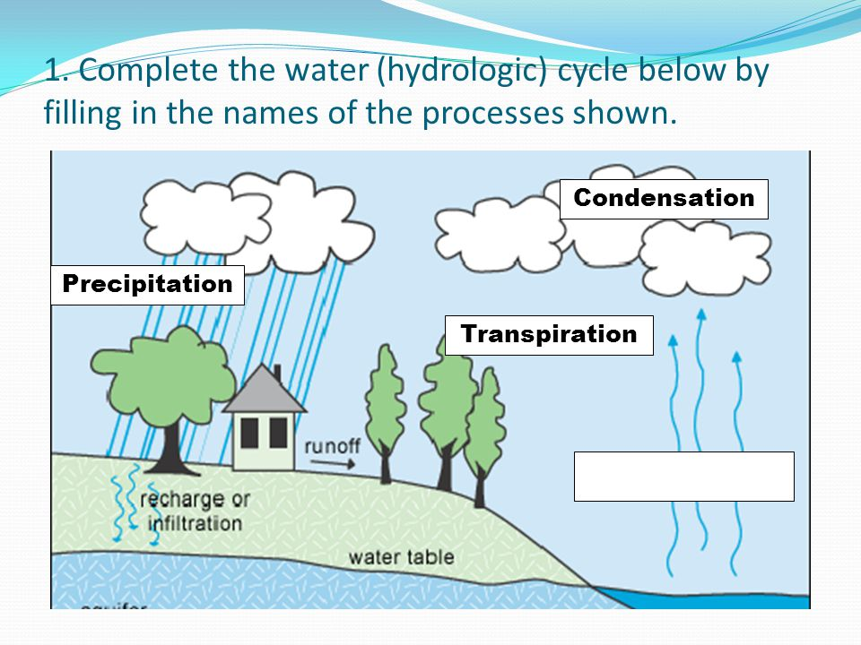 1. Complete the water (hydrologic) cycle below by filling in the names of the processes shown. Precipitation Condensation Transpiration