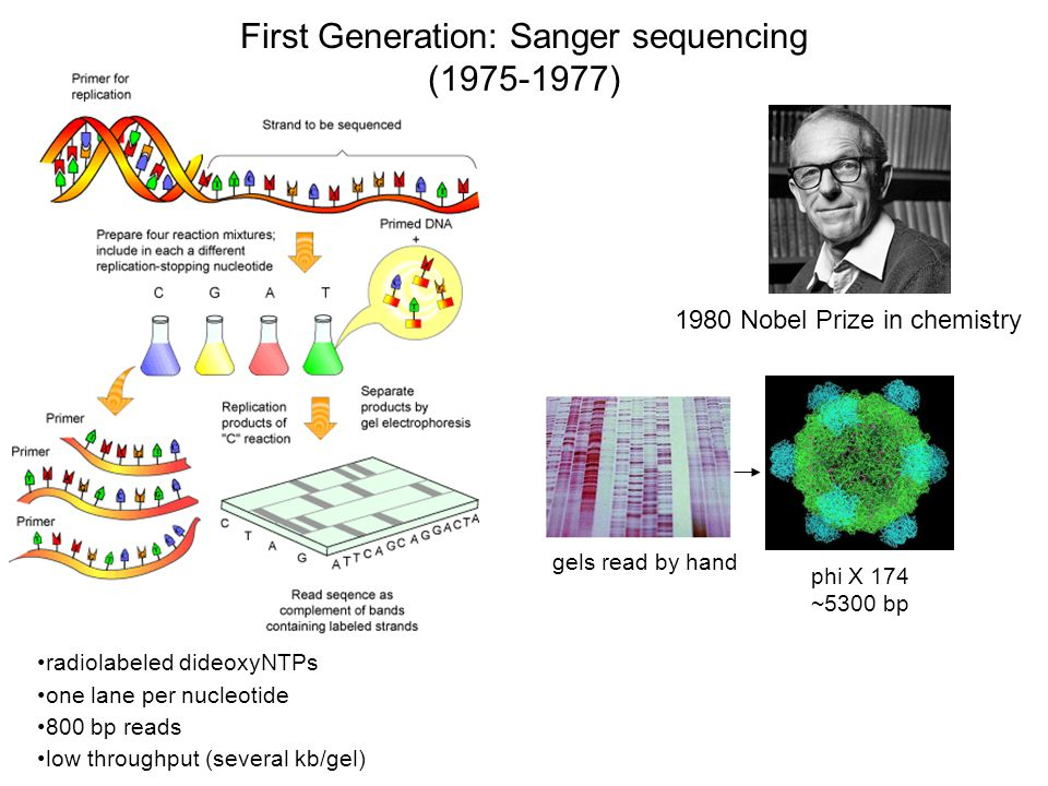 Sequencing By Synthesis (SBS) 5'5' G T C A G T C A G T C A G T 3'3' 5'5' C A G T C A T C A C C T A G C G T A First base incorporated Cycle 1: Add sequencing reagents Remove unincorporated bases Detect signal/Imaging Cycle 2-n: Add sequencing reagents and repeat All four labeled nucleotides in one reaction High accuracy Base-by-base sequencing No problems with homopolymer repeats Cleave off fluor and Deblock