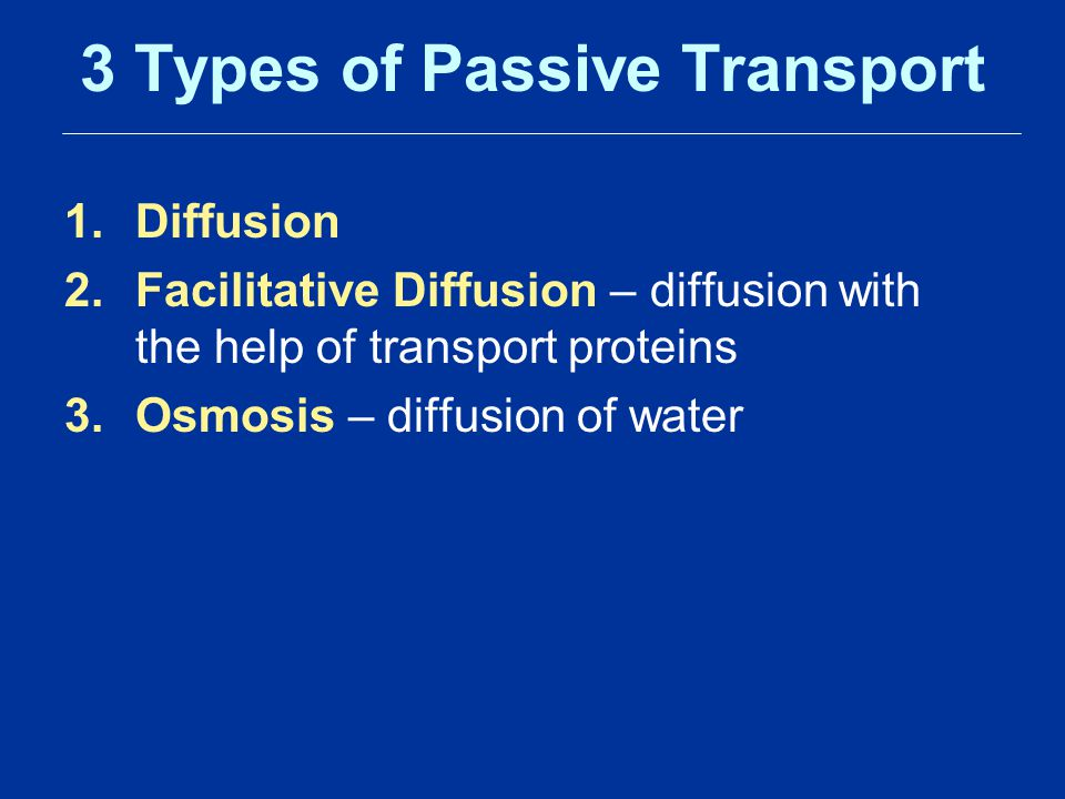 3 Types of Passive Transport 1.Diffusion 2.Facilitative Diffusion – diffusion with the help of transport proteins 3.Osmosis – diffusion of water