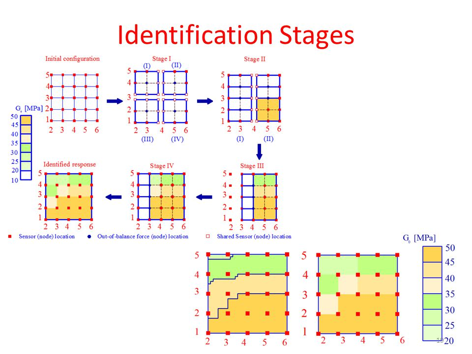 Identification Stages 19