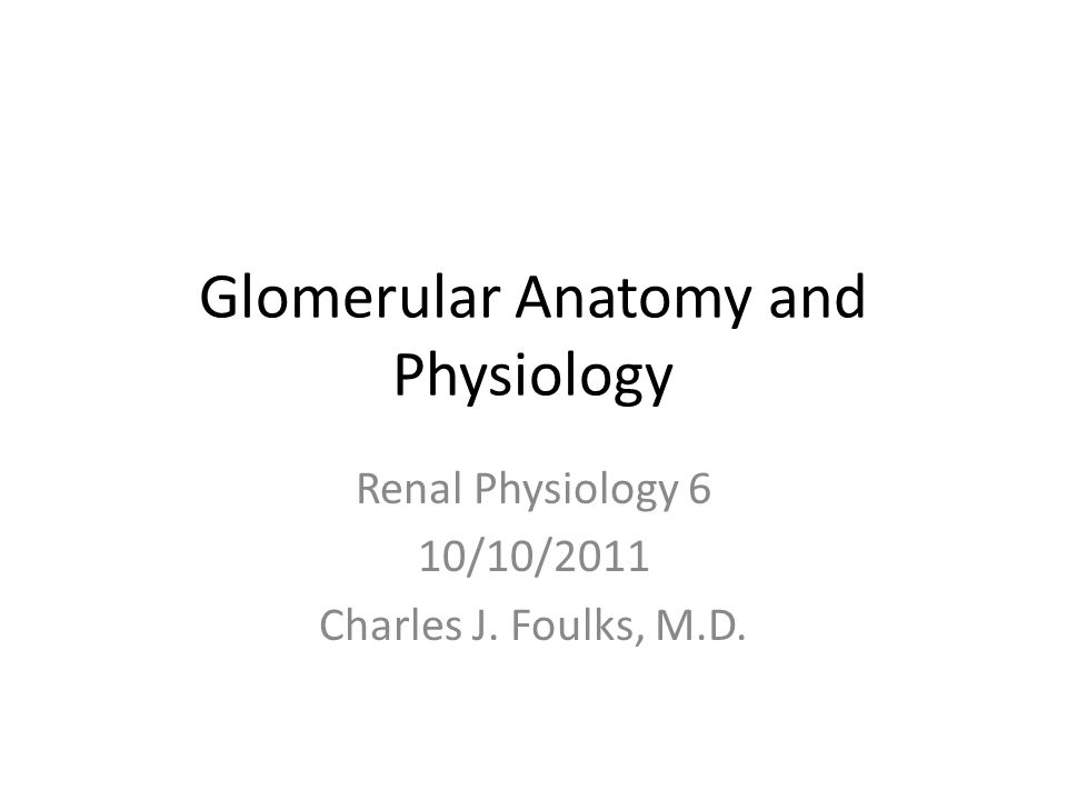 Glomerular Anatomy and Physiology Renal Physiology 6 10/10/2011 Charles J. Foulks, M.D.
